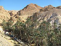 Тунис. Горный оазис. Chebika